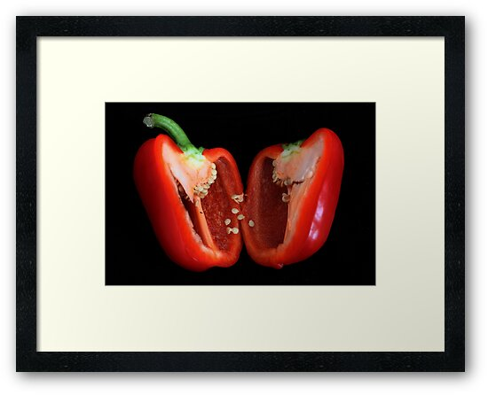Red  Bell Pepper by AnnDixon