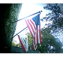 FLAGS OF AMERICA Photographic Print