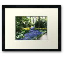 River of Blue - Flower Lane in the Keukenhof Gardens Framed Print