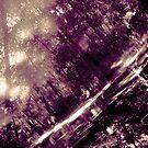 Sun Print No.1 Violet Reflections by Ms.Serena Boedewig