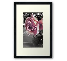 Dead beauty Framed Print