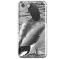 Drake Mallard iPhone Case/Skin