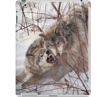 Timber Wolves Fighting iPad Case/Skin