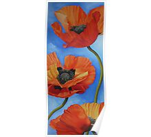 Sky full of Poppies Poster