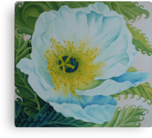 White Poppy Canvas Print
