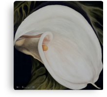 "Calla Lily ""Black Swan"" Canvas Print"