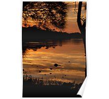 Golden Lakes Sunrise narrabeen Poster