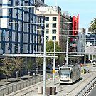 Melbourne University Tram Terminus by Maggie Hegarty