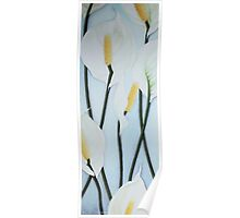 Seven Peace Lilies on blue Wall Poster