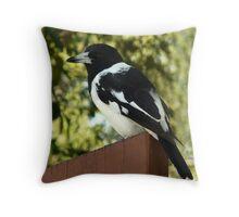 Pied Butcherbird Throw Pillow
