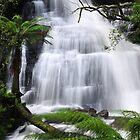 Triplet Falls - Otway National Park by John  Kowalski