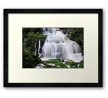 Triplet Falls - Otway National Park Framed Print