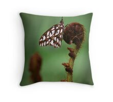Agraulis Vanillae on Crozier Throw Pillow