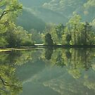 reflection of spring by dc witmer