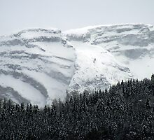 mountainside by Murray Breingan
