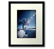 Dreams Of Reason Framed Print