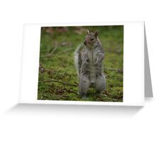 I`ll Stand By You! Greeting Card