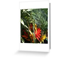 Tropic Color #3 Greeting Card