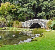 Botanical Gardens by Jude Glenn
