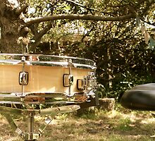 Snare Drum in the yard. by ferylbob