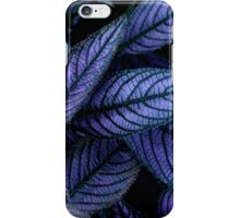 Bisous  iPhone Case/Skin
