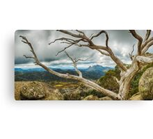 Cresta Valley - Mt Buffalo Canvas Print
