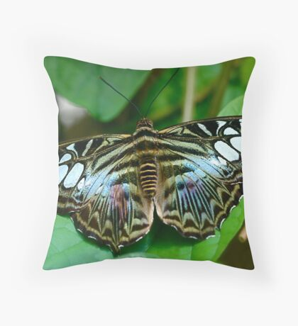 Parthenos sylvia Throw Pillow