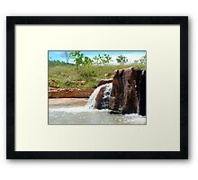 Soda Creek Framed Print