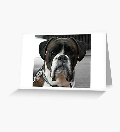 Meet Biff Greeting Card