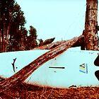 Surfboard by Joseph N. Hall