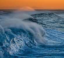 Wild Waves by Sharon Bree
