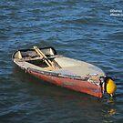Anchored Boat by Darren Freak
