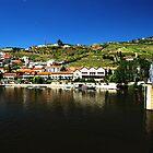 Pinhão, Portugal by elaintahra