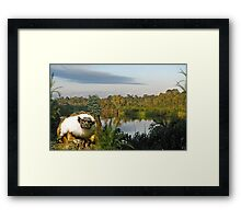 1181-Amazon Yoda Framed Print