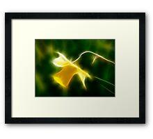 Fractilius Daffodil Framed Print