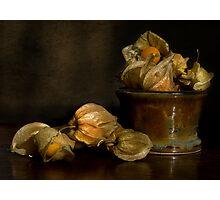 Cape Gooseberries Photographic Print