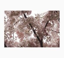 A Cloud of Pastel Pink Cherry Blossoms Celebrating the Arrival of Spring  Kids Clothes