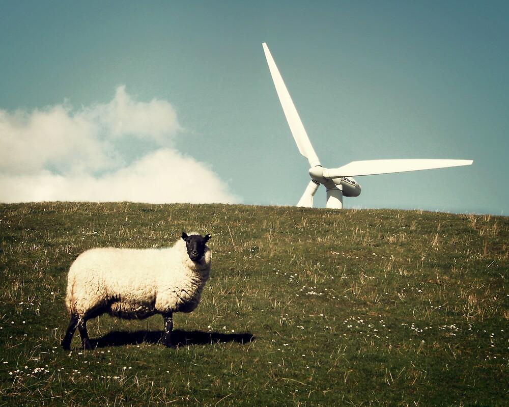 Wind - Farm by Anthony Thomas