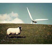 Wind - Farm Photographic Print
