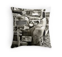 Hunky Dory Throw Pillow