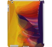 tornado iPad Case/Skin