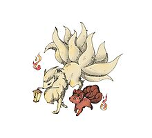 Pokemon Photographic Print