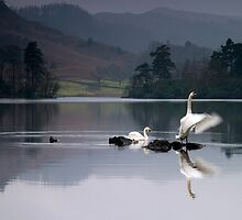 Dawn Display on Rydal Water by Martin Lawrence