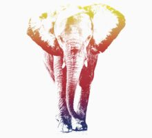 Elephant colored Kids Clothes