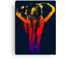 Elephant colored Canvas Print