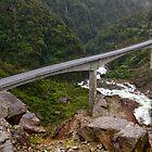 Otira Viaduct 1 by Charles Kosina