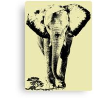 Elephant sahara Canvas Print