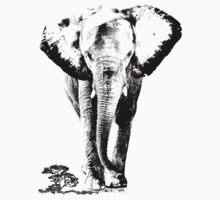 Elephant sahara Kids Clothes