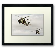 Tigers On The Prowl Framed Print