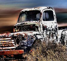 Desert Runner by Carla Jensen